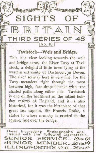 Tavistock, Weir and Bridge