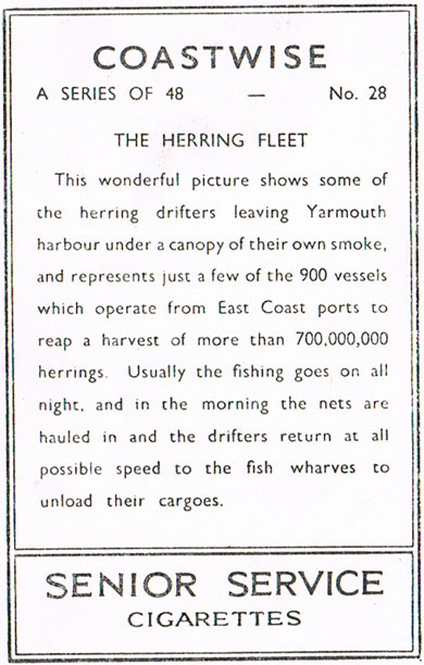 The Herring Fleet