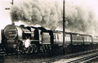 The Royal Scot