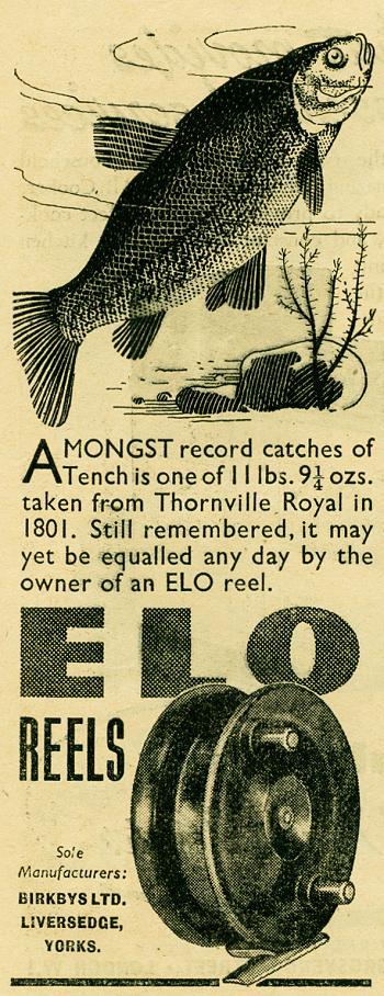 ELO Reels