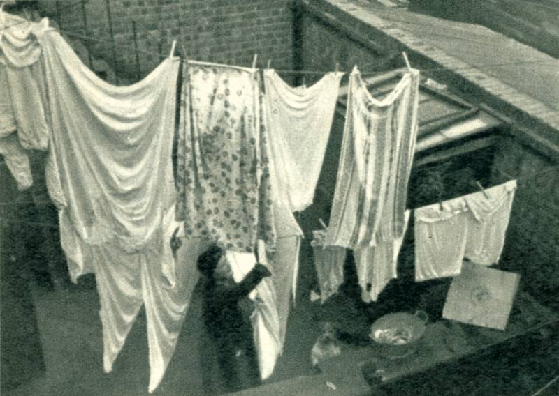 Washing-day in the Backyards